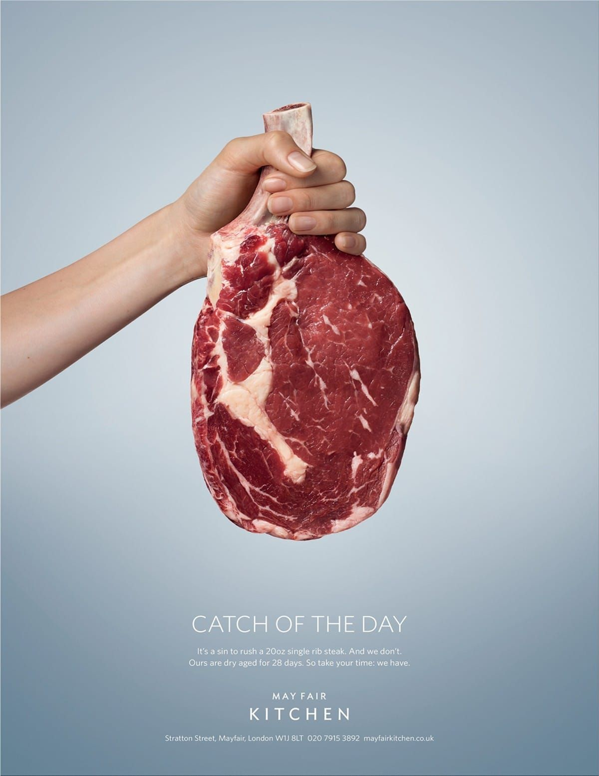 May Fair Kitchen: Catch of the day|May Fair Kitchen ads