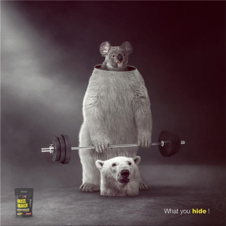 """Advanced Sports Nutrition """"What you hide!"""""""