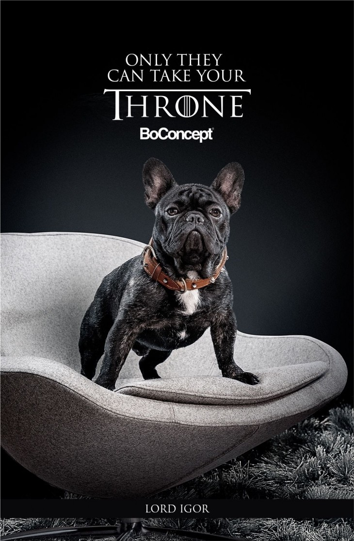"""BoConcept """"Only They Can Take Your Throne"""" by Mass Digital"""
