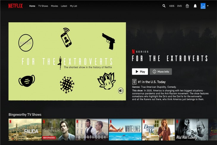 """Netflix """"For the Extroverts"""" ads"""