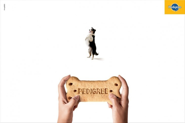 Pedigree print ads