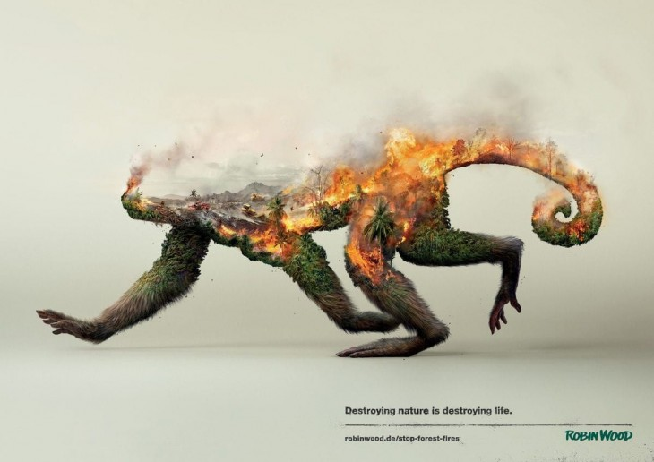 Robin Wood: Destroying nature is destroying life.