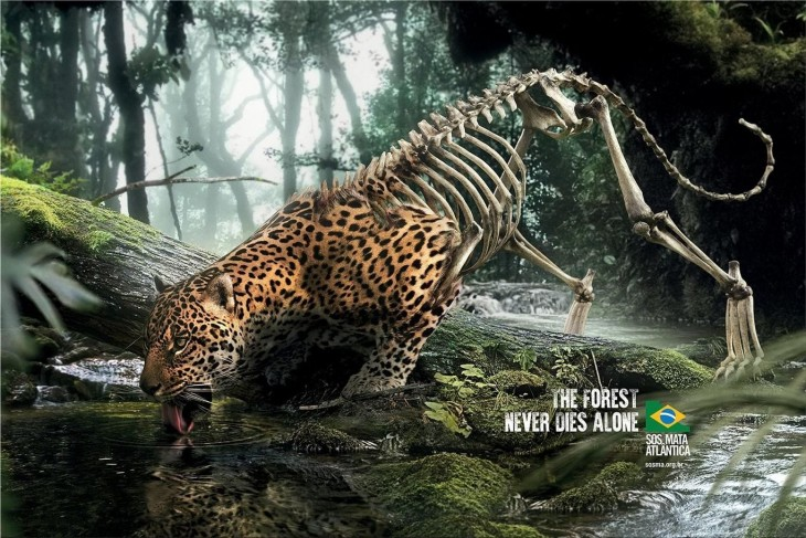 """SOS Mata Atlântica: """"The forest never dies alone."""" by DPZ&T"""