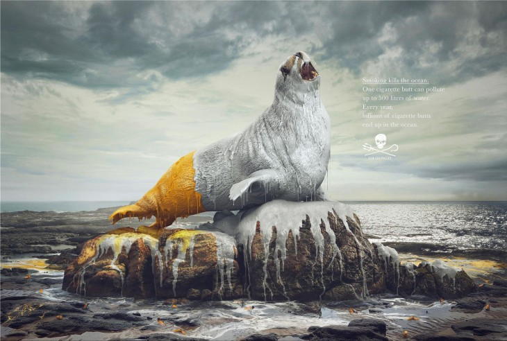 Sea Shepherd ads