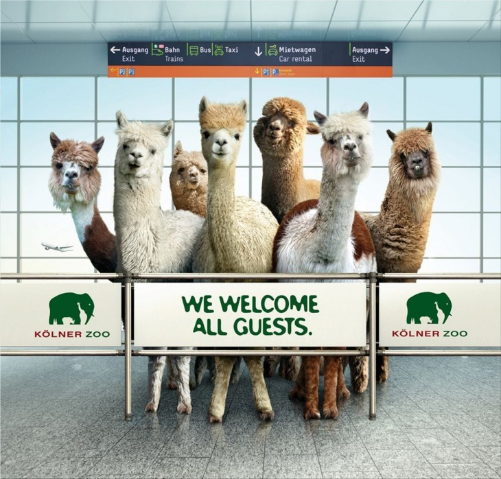 Zoo Cologne ads