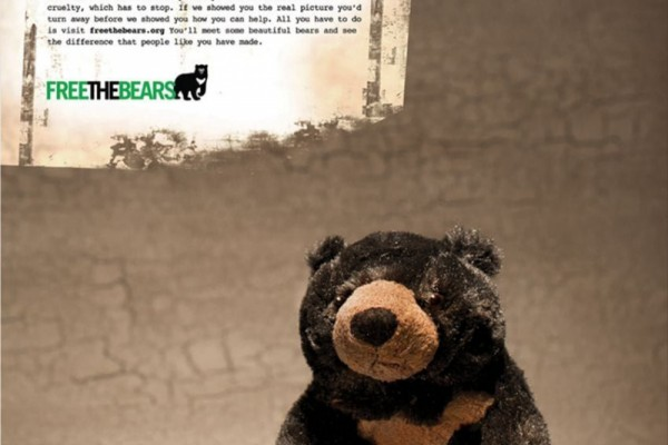 Free The Bears ads