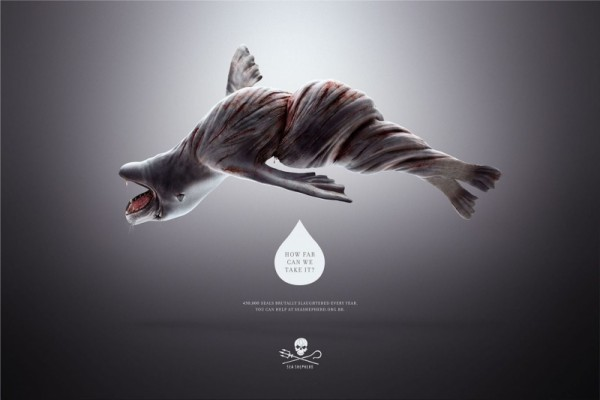 Sea Shepherd print ads