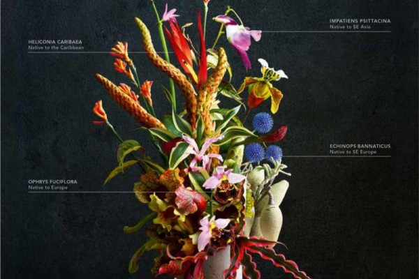 """Land Rover: """"This bouquet is for you"""" by Spark44"""
