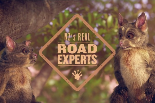 Toyota: Meet The Road Experts