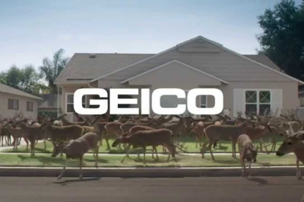 GEICO: Genies - Did You Know