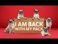 Vodafone - Pugs are back!